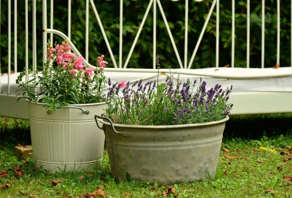 Lavande et fleurs dans une bassine recyclée en pot de fleur.