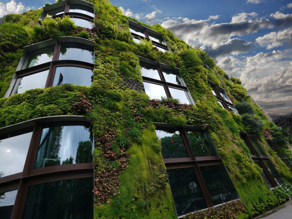Mur végétal sur la façade extérieure d'un bâtiment.